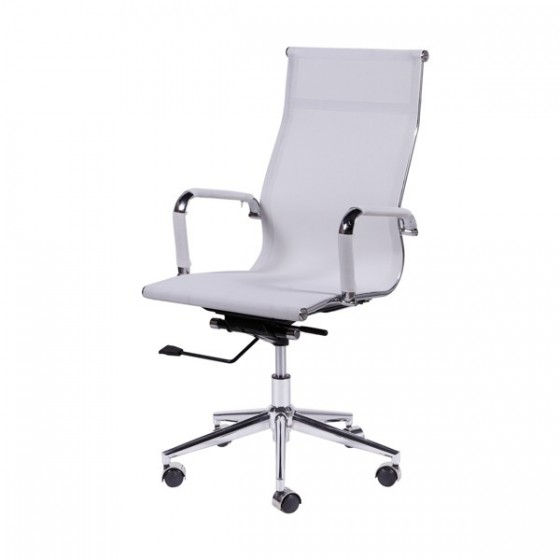 Cadeira Presidente em tela
